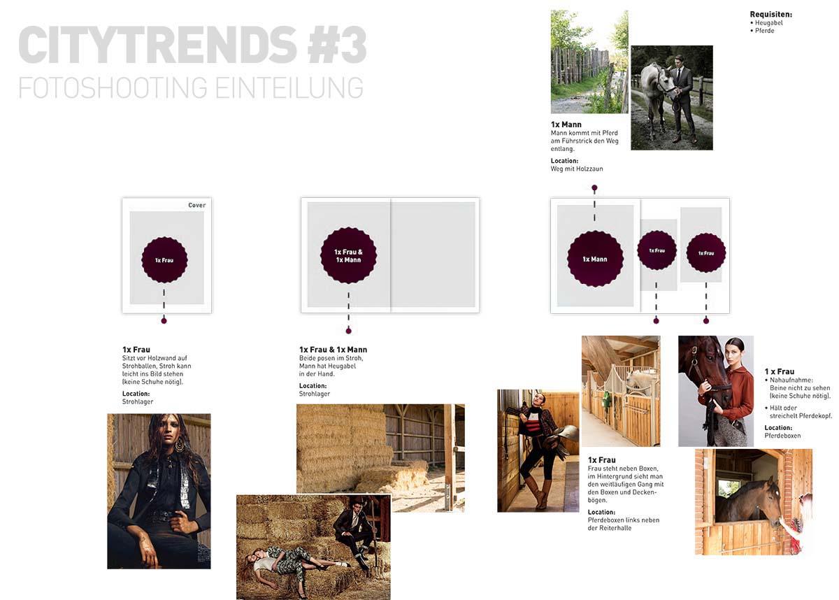 CITYtrends #3 Konzept & Seitenspiegel_sw